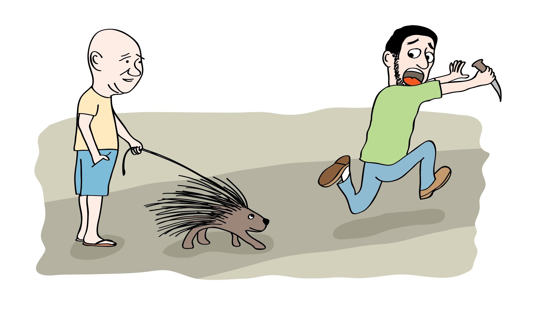 אללה הוא עכבר או דורבן  טל לזר